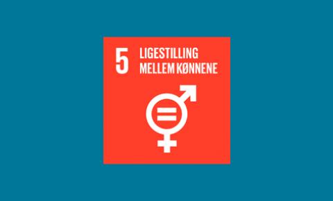 5. Ligestilling mellem kønnene